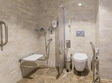 Handicap Bathroom toilet